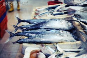 114473713-boxes-of-blue-fish-gettyimages