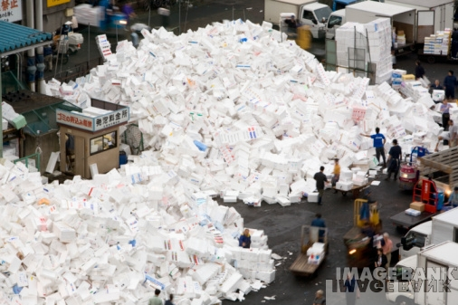 Problems With Disposal Of Polystyrene Waste Vita